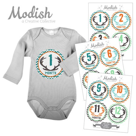Original Near Mint Sticker (Monthly Baby Stickers, Boy, Antlers, Deer, Woodland, Orange, Teal, Mint, Brown, Baby Photo Prop, Baby Shower Gift, Baby Book Keepsake, Modish)