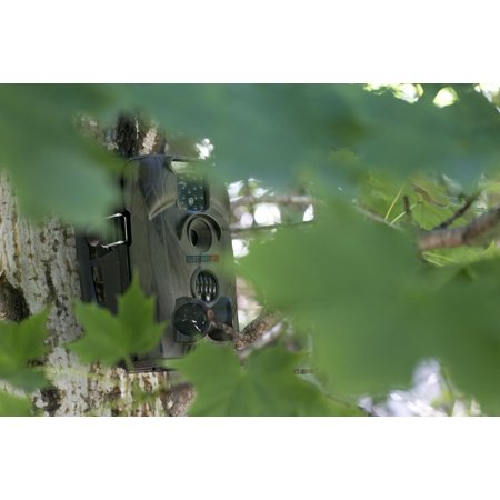 USB Compatible Outdoor Hunting Trail Cam Video Recorder - image 2 of 7