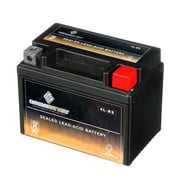 Chrome Battery Ytx4L-Bs Power Sports Battery Replaces 4L-Bs Ext4 Gtx4L-Bs Cytx4L-Bs