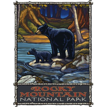 "Rocky Mountain National Park Bears In Stream Metal Art Print by Paul A. Lanquist (9"" x 12"")"
