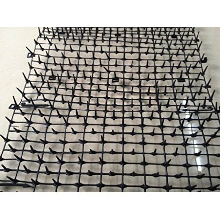 cat scat mat anti cats network digging stopper prickle strip home pest repellent. Black Bedroom Furniture Sets. Home Design Ideas