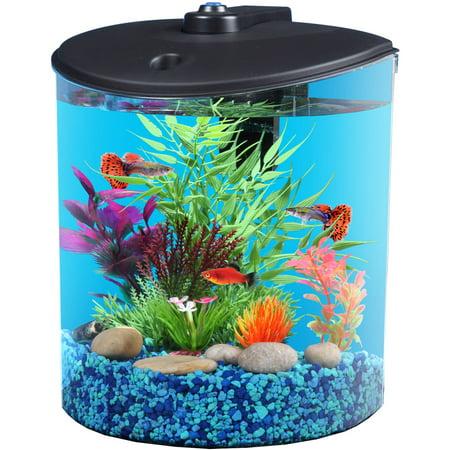Hawkeye 1 5 gallon aquatank with led lighting and power for Fish tank filter walmart