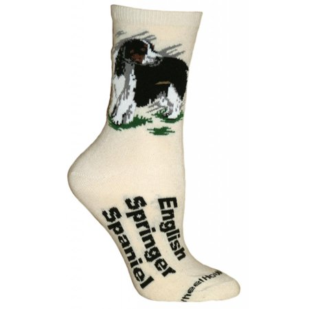English Springer Spaniel Natural Color Cotton Ladies