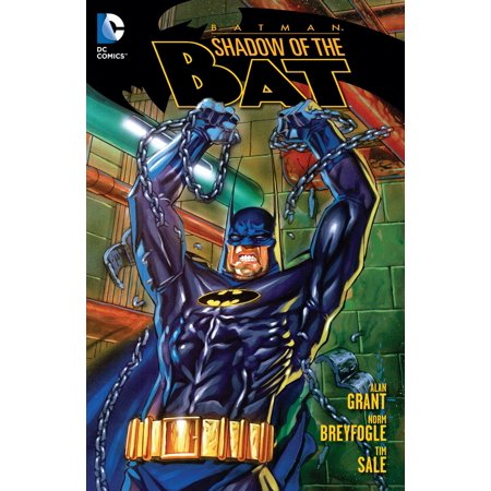 Batman: Shadow of the Bat Vol. 1 (Rouge The Bat And Shadow The Hedgehog)