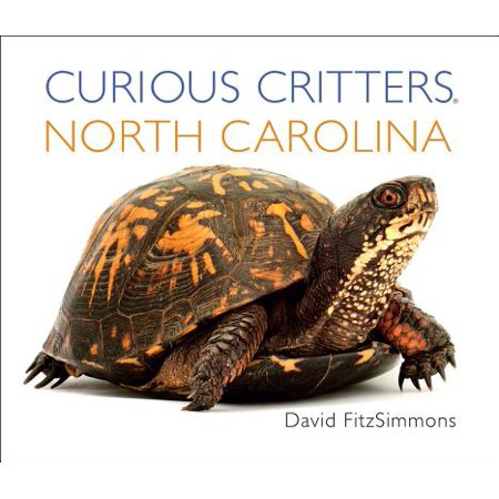 Curious Critters: North Carolina (Board - Curious Critters
