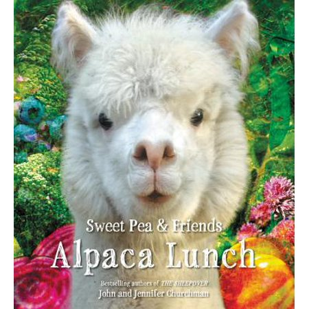 - Alpaca Lunch