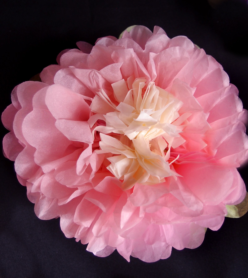 """Quasimoon 16"""" Multi-Color Tissue Paper Flower Decorations (Pink Combo, 3 PACK) by PaperLanternStore"""