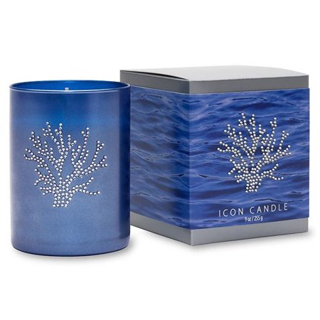 Coral Candles (Primal Elements CIBC Coral 9.5 oz. Icon Candle in Blue)
