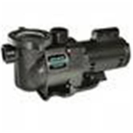 Pentair Sta-Rite N1-1A HP SuperMax Standard Efficient Single Speed High Performance Inground Pool Pump, 1 HP,