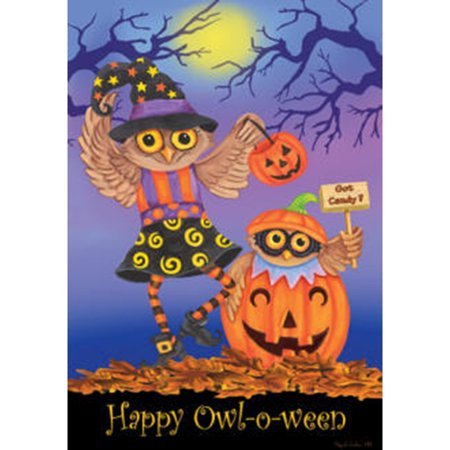 Custom Decor Halloween Owls- Fl