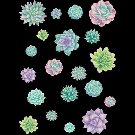 Teacher Created Resources TCR8590 Rustic Bloom Succulent Accents Assor