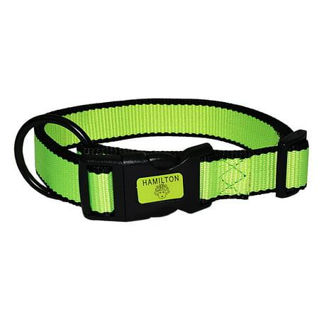 Hamilton Double Nylon Dog Collar - Hamilton 1