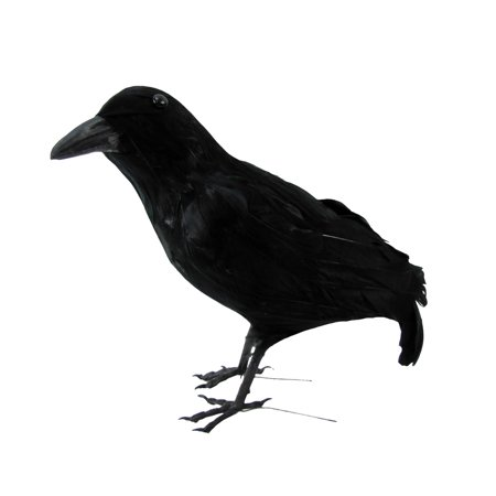 Black Lifesize Fake Crow Hunting Decoy Raven Halloween Accessory Movie Prop](Fake Breast For Halloween)