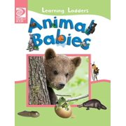 Learning Ladders 2/Hardcover: Animal Babies (Hardcover)