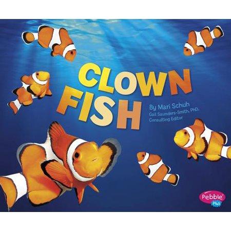 Clown Fish - Clown Fish