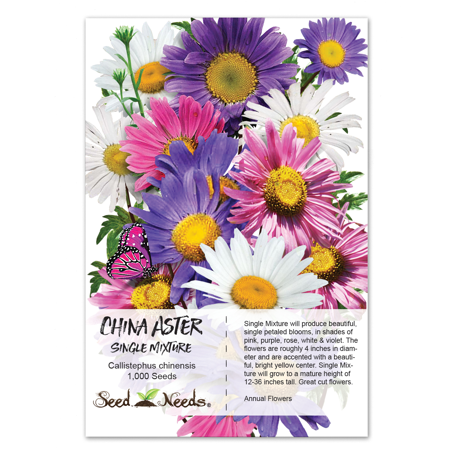 Packet of 1,000 Seeds, China Aster Seeds, Single Blend (Callistephus chinensis)