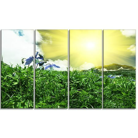 Design Art 'Sunny Meadow with Green Grass' 4 Piece Photographic Print on Wrapped Canvas Set (Meadows Design Lock Set)
