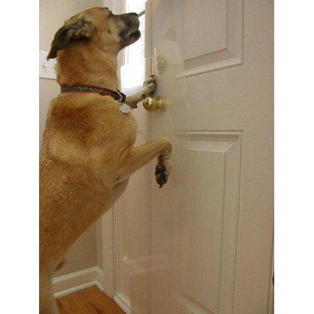 Heavy Duty Clawguard Big Dog Scratch Shield Ultimate Door Frame