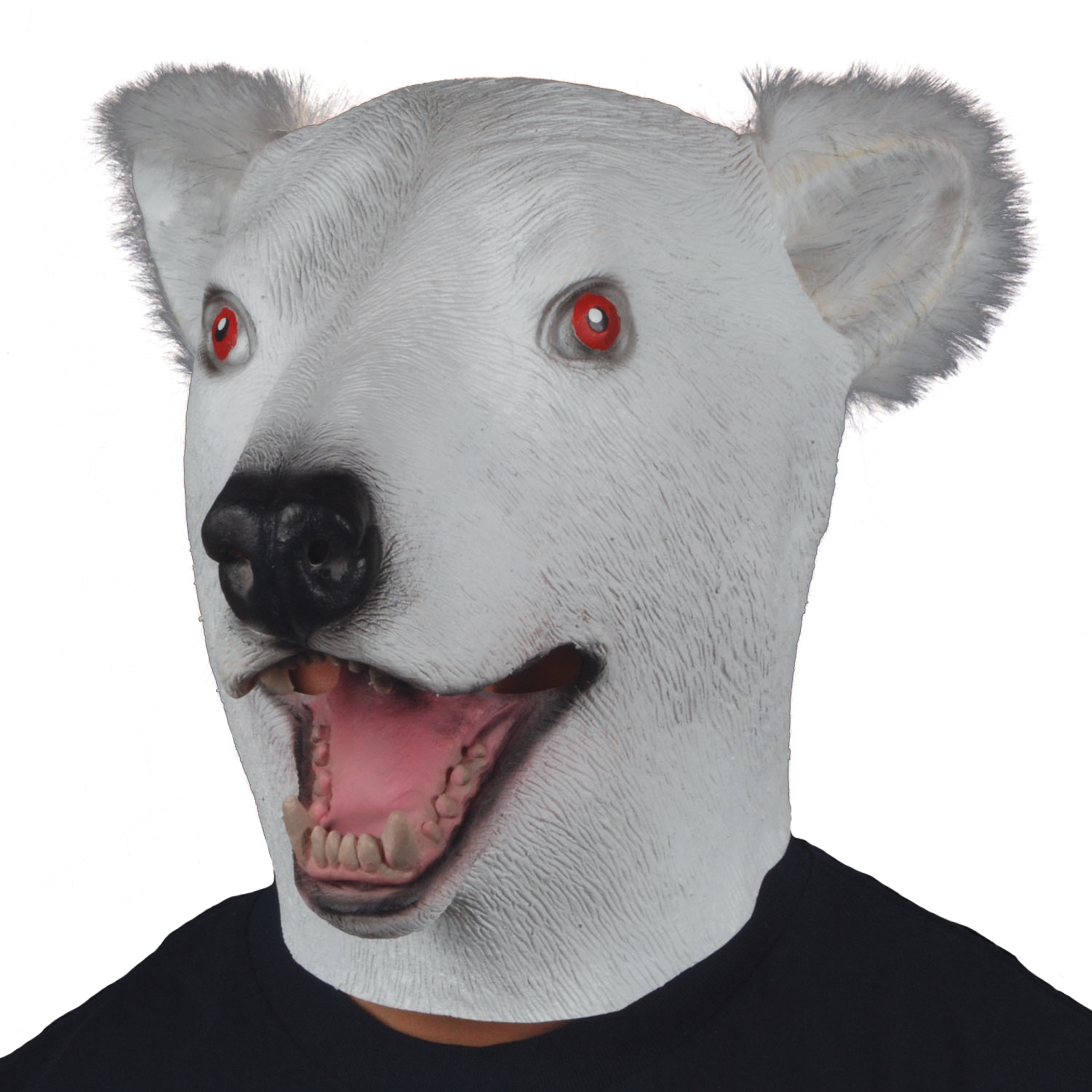 Adult bear star