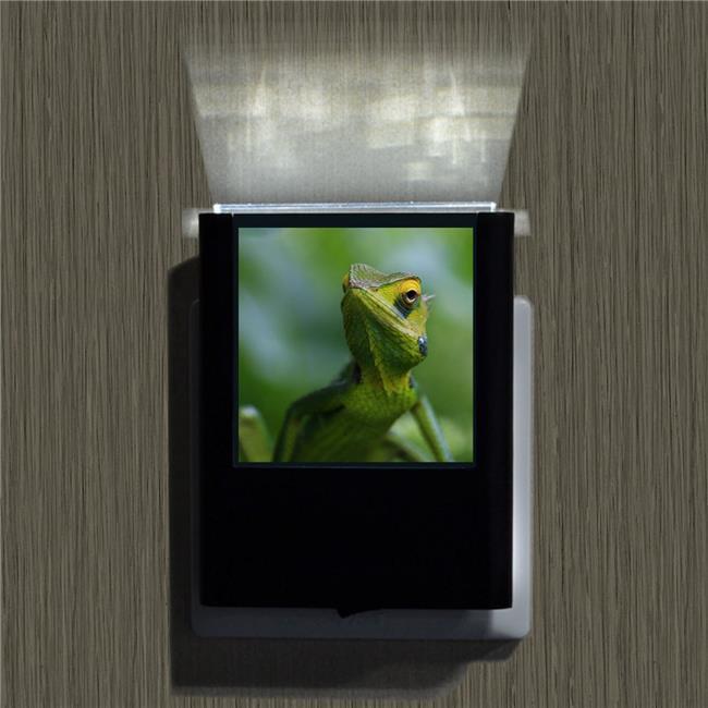 Uniqia UNLC0184 Night Light - Chameleon 2 Color