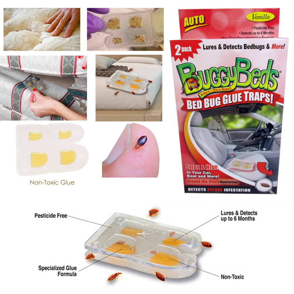 12 (6pk) Buggy Beds Bed Bug Auto Glue Trap Non Toxic Insect Tic Detector Remover