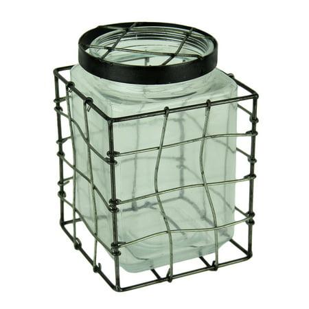 Square Glass Stem Jar Flower Vase in Metal Cage Frame