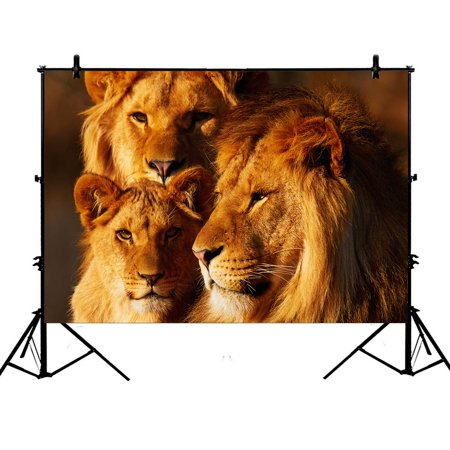 YKCG 7x5ft Sunset African Landscape Wildlife Animal Lions Photography Backdrops Polyester Photography Props Studio Photo Booth