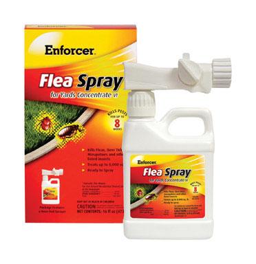 Enforcer Concentrate VI Flea Spray for Yards, 16 fl oz