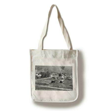 - Creede, Colorado - Scene near Upper Rio Grand River Photograph (100% Cotton Tote Bag - Reusable)
