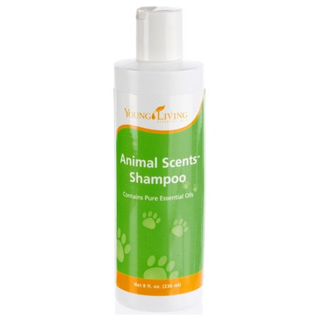 Young Living Animal Scents Shampoo 8 fl oz (236 g)