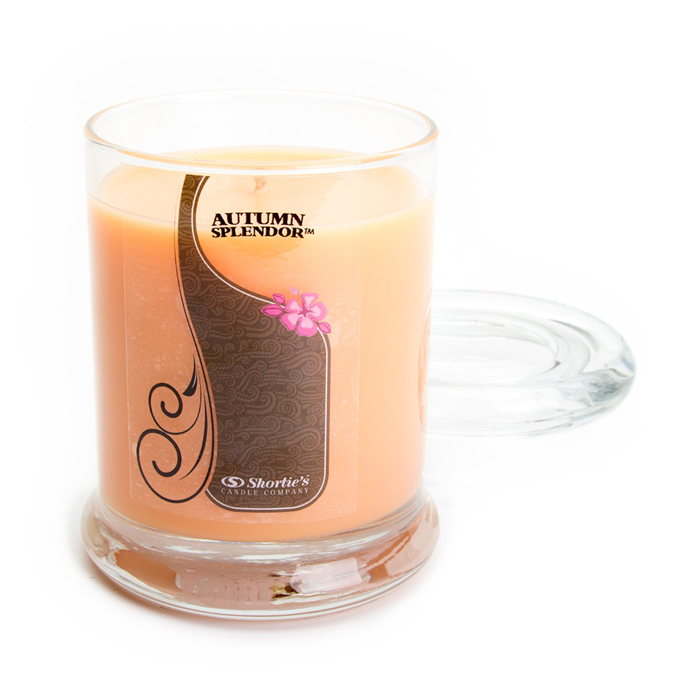 Autumn Splendor Candle - 6.5 Oz. Highly Scented Orange Jar Candle - Christmas Candles Collection