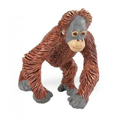 Safari Orangutan (Safari Ltd Wild Safari Wildlife Orangutan Baby )