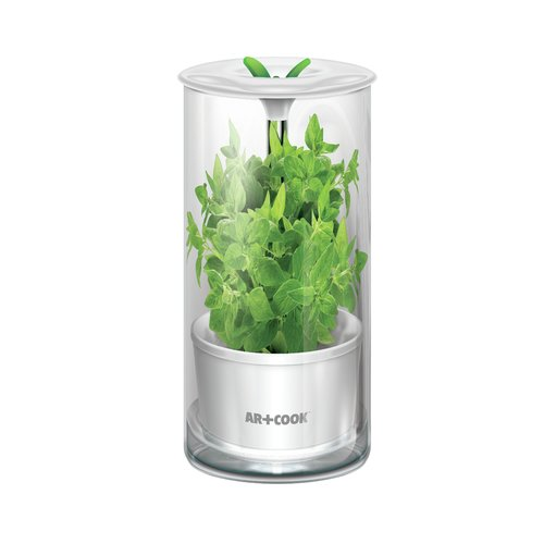 Art and Cook Herb Keeper Food Storage Container Walmartcom
