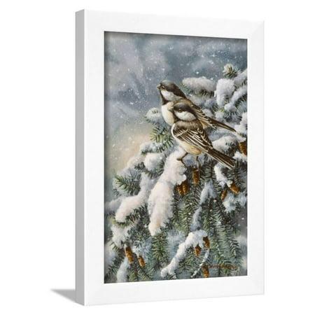 - Chickadee in Spruce Framed Print Wall Art By Wanda Mumm