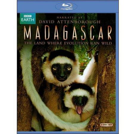 Madagascar  The Land Where Evolution Ran Wild  Blu Ray