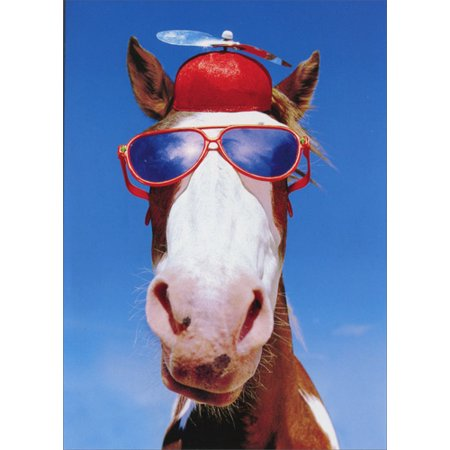 Sully Hat (Avanti Press Silly Horse With Hat And Sunglasses Funny Birthday)