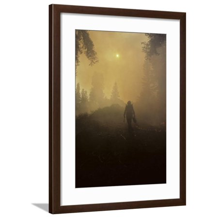 Forest Fire, Sequoia and Kings Canyon National Park, California, USA Framed Print Wall Art By Gerry Reynolds Fire King White Milk