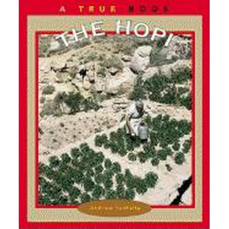 The Hopi Hopi Indian Designs