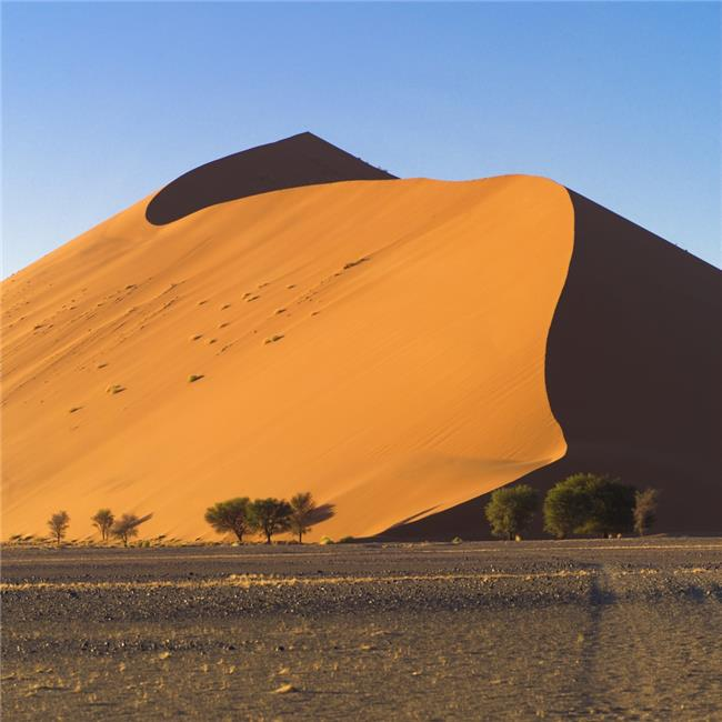 Posterazzi DPI1831502 Sand Dune Namibia Africa Poster Print by Keith Levit, 15 x 15 - image 1 of 1