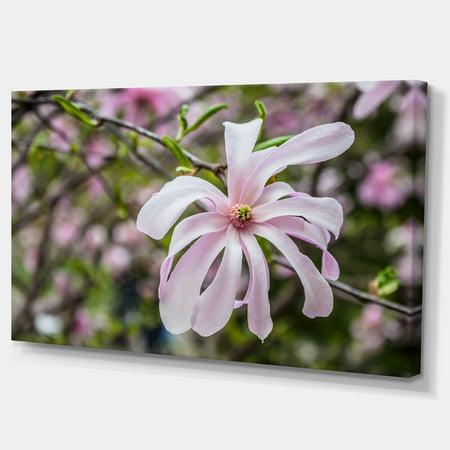 Beautiful Magnolia Flowers - Large Floral Canvas Art Print - image 3 de 3