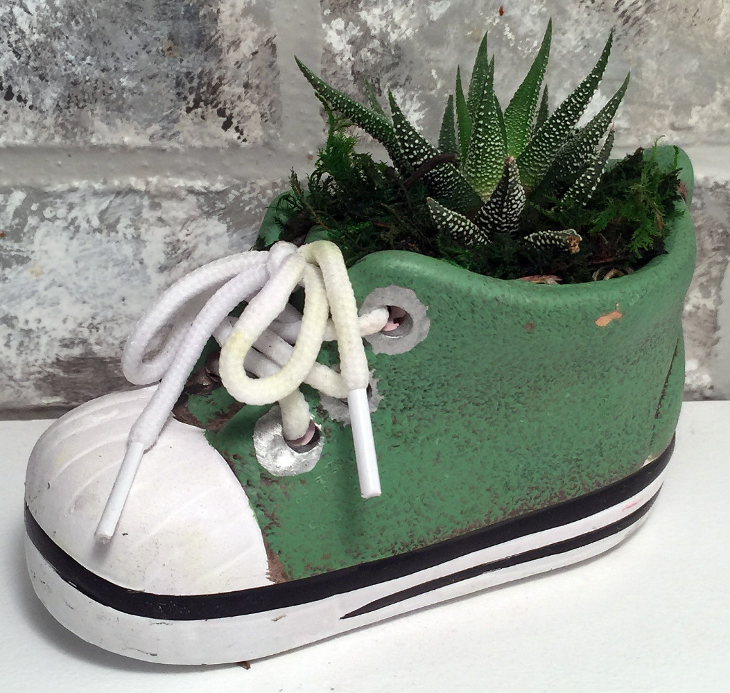547a7d5c5547d Baby Shoe Planter with Live Plant - 5 x 2 x 4.75
