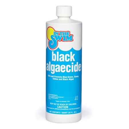 In The Swim Black Pool Algaecide 1 Quart