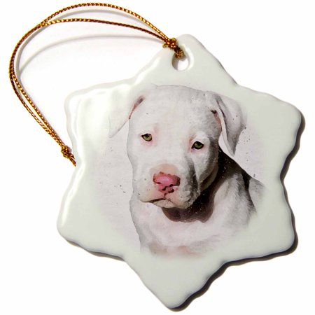 - 3dRose American Staffordshire Terrier Pit Bull Puppy Watercolor - Snowflake Ornament, 3-inch