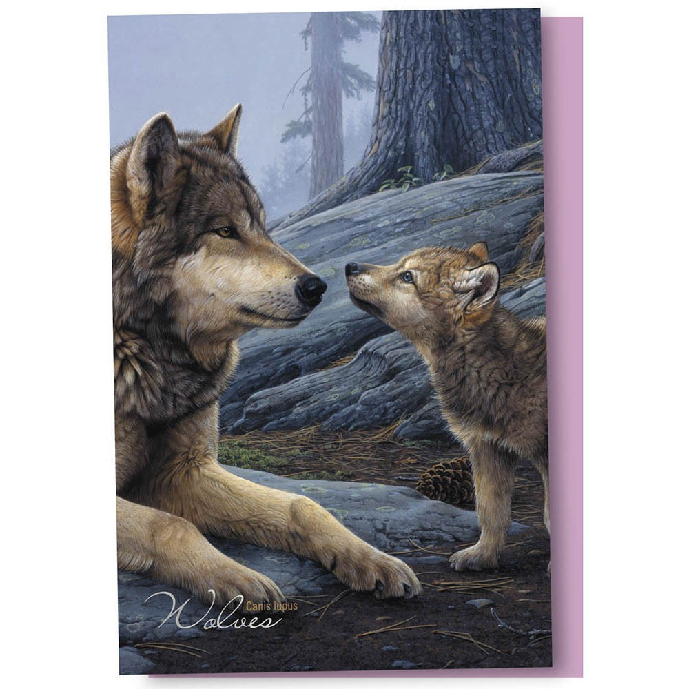 Tree-Free Greetings Wolf Brothers Boxed ECOnotes Blank Note Cards-FS66914