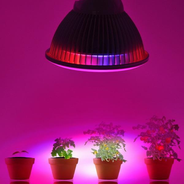 Clearance 24W LED Plant Grow Light High Efficient Growing Lamps for Garden Greenhouse PESTE by