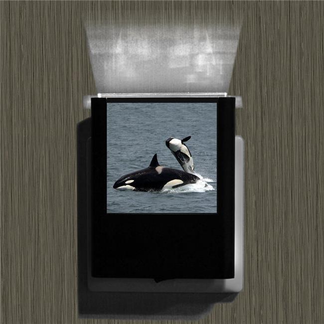 Uniqia UNLC0235 Night Light - Whale 1 Color