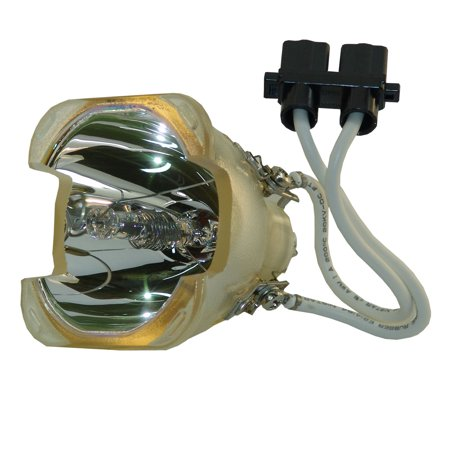 Original Osram Projector Lamp Replacement for Optoma BL-FS300B (Bulb Only) Bl Fs300b Replacement Lamp