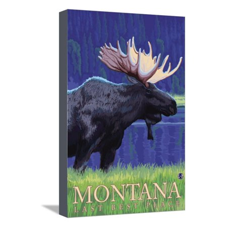 Montana, Last Best Place, Moose at Night Stretched Canvas Print Wall Art By Lantern (Best Place To Order Canvas Prints)