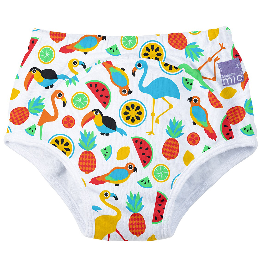 Potty Training Pants (Choose your Size)