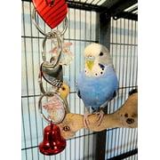 Bonka Bird Toys 1742 Heart Mirror Bird Toy.